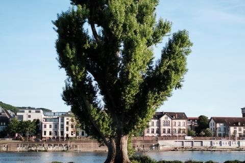 Heidelberg-Endlich-mal-rauskommen-5